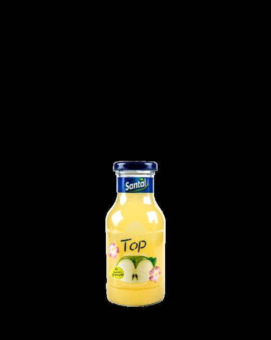 Apple Juice Mela Santa 24x25cl