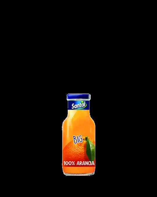 Orange Juice Arancia Santal 24x25cl