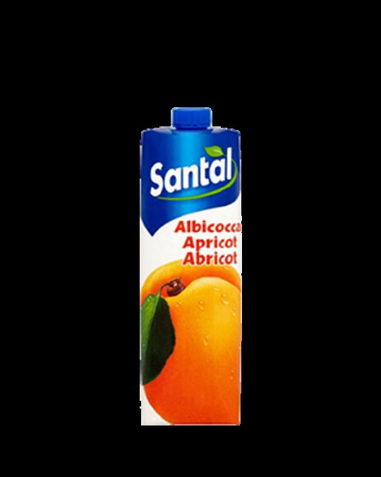 Orange Juice Arancia Santal 12x1L